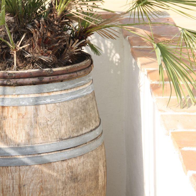 plantenbak bij entree zwembad